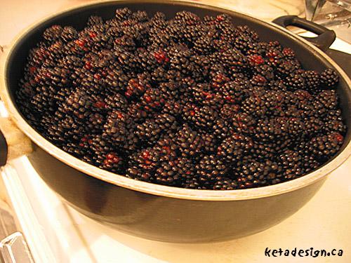Bberry1