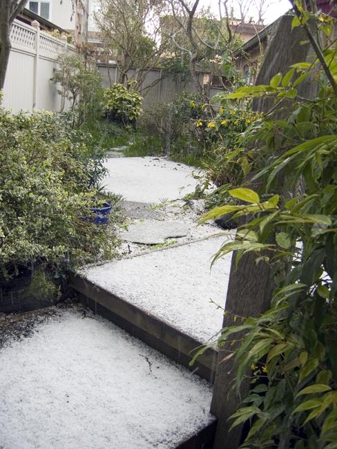 Hail2_2